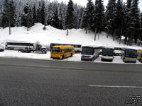 Stevens Pass Bus Lot