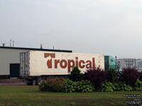 Midland Tropical